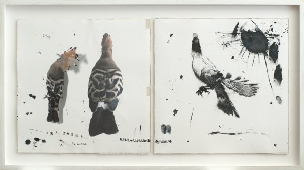 Ink, digital print and mixed media on artist's paper, 2013 44.5 x 79.5 cm (each)