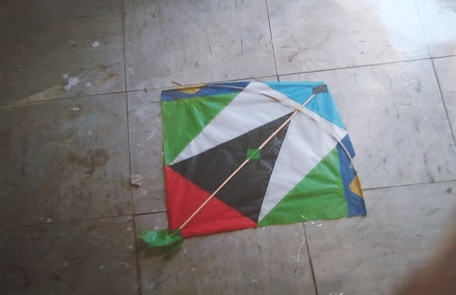 Rising Above The Storm on a Kite by Hanaa Malallah